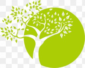 Cartoon Tree Logo Image - Logo Tree PNG