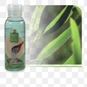Eucalyptus - Milliliter Gum Trees Odor Sauna Menthol PNG