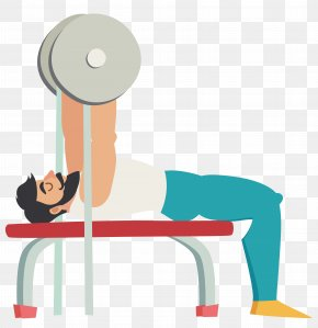 Cartoon Muscular Man Holding Barbell Movement - Bench Press Physical Exercise Squat PNG