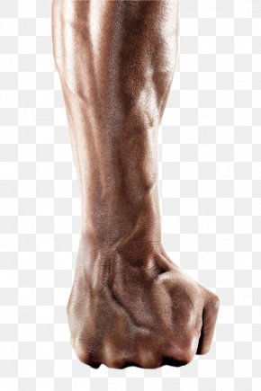 Arm - Arm Fist PNG