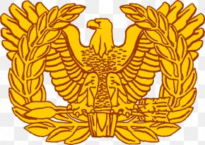 Rising - Warrant Officer Army Officer Military Rank United States Army PNG