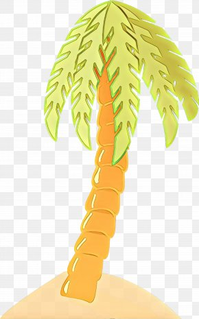 Arecales Woody Plant - Palm Tree PNG