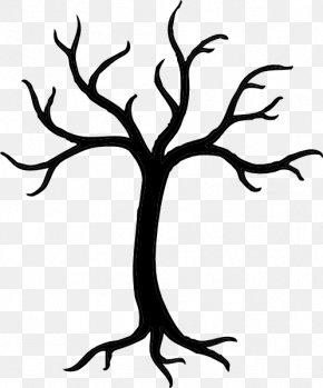 Tree - Tree Branch Clip Art PNG