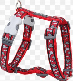 Dog - Dog Harness Dingo Puppy Dog Collar PNG