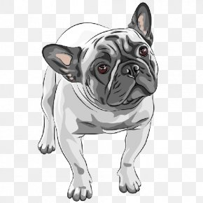 Puppy - French Bulldog American Bulldog Puppy Dog Breed PNG