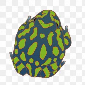 Green Frog - U6696u6696u73afu6e38u4e16u754c Shop Grocery Store No Ni PNG