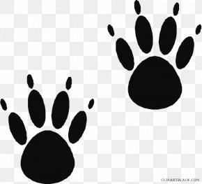 Bear - American Black Bear Paw Clip Art Cat PNG