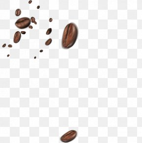 Coffee Beans - Coffee Bean Cafe Coffee Cup PNG