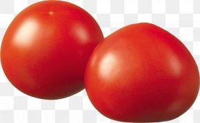 Tomato - Plum Tomato Tomato Juice Bush Tomato PNG