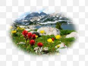 1080p High-definition Television Desktop Wallpaper High-definition Video PNG