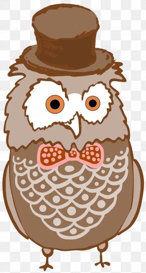 Owl - Owl Bird Clip Art Christmas Clip Art PNG