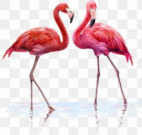 One Pair Of Flamingos - Flamingo Wall Decal Tapestry Interior Design Services PNG