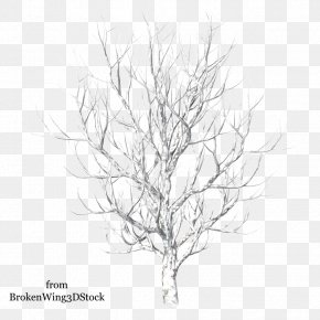 Twigs - Winter Tree Drawing Snow PNG