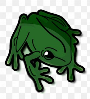 Frog - Toad Tree Frog Clip Art PNG