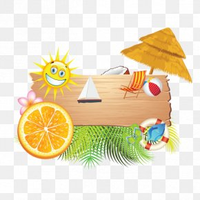 Vacation - Summer Vacation Summer Vacation Clip Art Beach PNG