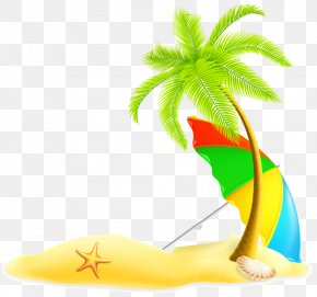 Palm Island Vector Material - Beach Summer Illustration PNG