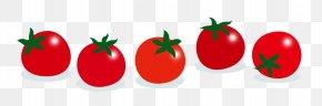 Spring Illustration - Plum Tomato Diet Food Clip Art PNG