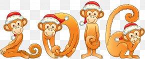 Christmas Monkey - Monkey Chinese New Year Clip Art PNG