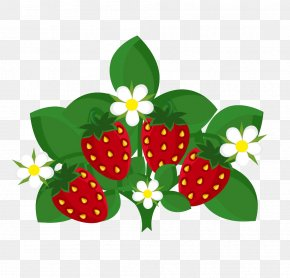 Vector Illustration Strawberry - Strawberry Fruit Euclidean Vector Illustration PNG