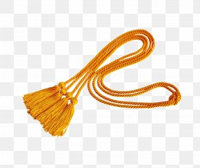 Rope - Rope Tassel Square Academic Cap Stock Photography PNG
