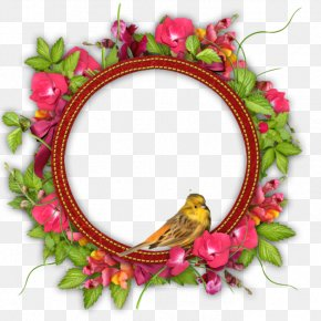 Flower - Paper Best Borders Picture Frames Floral Design Handicraft PNG