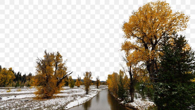 Yellowstone National Park Happy Valley Beijing Tourist Attraction Ninglang Yi Autonomous County Tourism, PNG, 1200x675px, Yellowstone National Park, Autumn, Danh Lam Thu1eafng Cu1ea3nh, Fukei, Happy Valley Beijing Download Free