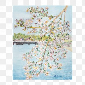 Cherry Blossom Watercolor - Cat And Bird Watercolor Painting Cherry Blossom Poster PNG