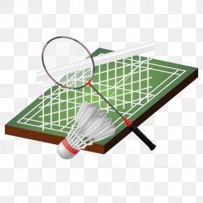 Badminton - Badmintonracket Shuttlecock Euclidean Vector PNG