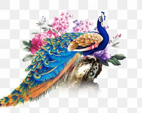 China Wind Peacock - China Paper Peafowl PNG