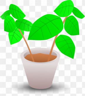Flower Pot - Flowerpot Plant Clip Art PNG
