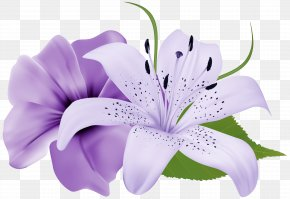 Purple Two Exotic Flowers Clipart Image - Flower Purple Clip Art PNG