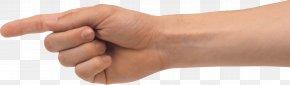 Hands , Hand Image Free - Thumb Nail Wrist PNG