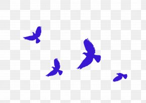 Blue Simple Flying Pigeon Decoration Pattern - 19th National Congress Of The Communist Party Of China Socialism With Chinese Characteristics PNG