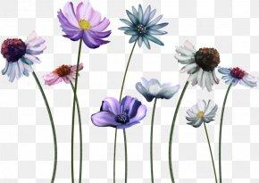 Clip Art Flowers Desktop Wallpaper - Common Daisy Flower Desktop Wallpaper Display Resolution Image Resolution PNG