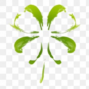 Plant Stem Flower - Leaf Green Plant Flower Plant Stem PNG