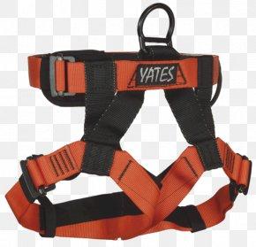 Belt - Climbing Harnesses Rescue National Fire Protection Association Belt Carabiner PNG
