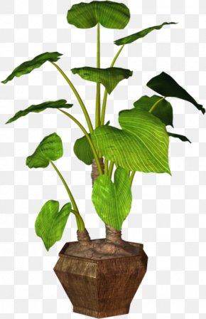 Leaf - Leaf Flowerpot Houseplant Clip Art Plants PNG