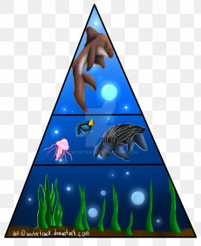Food Pyramid - Leatherback Sea Turtle Food Pyramid PNG