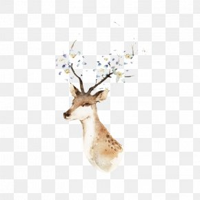 Deer - Watercolor Painting Drawing Illustration PNG
