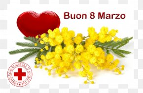 Festa Della Donna - 8 March Genoa International Women's Day Woman Image PNG