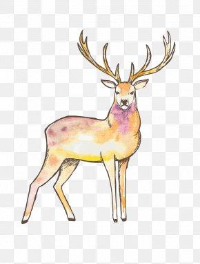 Painted Deer Pattern - Reindeer Elk Red Deer Moose PNG