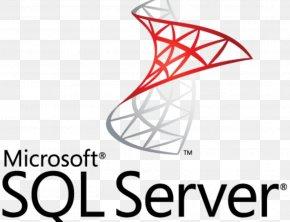 Microsoft - Microsoft SQL Server SQL Server Management Studio Database Transact-SQL PNG