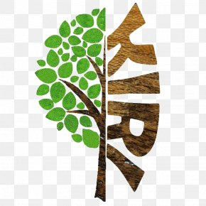 Tree - Tree Logo Branch Image Vector Graphics PNG