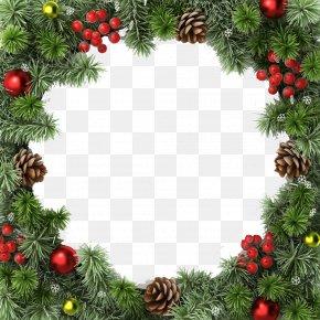 Frame - Christmas Tree Christmas Decoration Christmas Ornament Christmas Lights PNG
