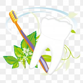 Toothbrush And Tooth Vector - Toothbrush Euclidean Vector PNG