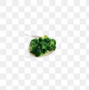 Broccoli - Green Pattern PNG