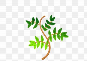 Branch Leaves Cliparts - Branch Leaf Tree Clip Art PNG