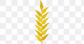 Vascular Plant Grass Family - Leaf Yellow Plant Grass Family Vascular Plant PNG