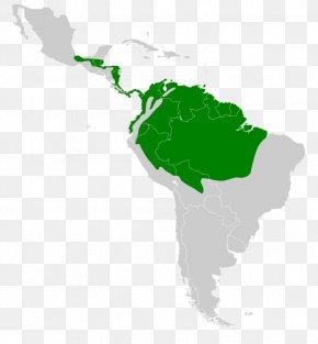 United States - Latin America South America United States Cultural Region PNG