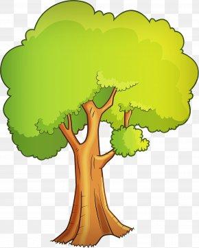 Plant Stem Leaf Vegetable - Green Tree Clip Art Plant World PNG